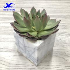 White marble square flowerpot